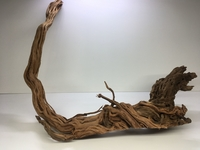 Dragon Wood 2